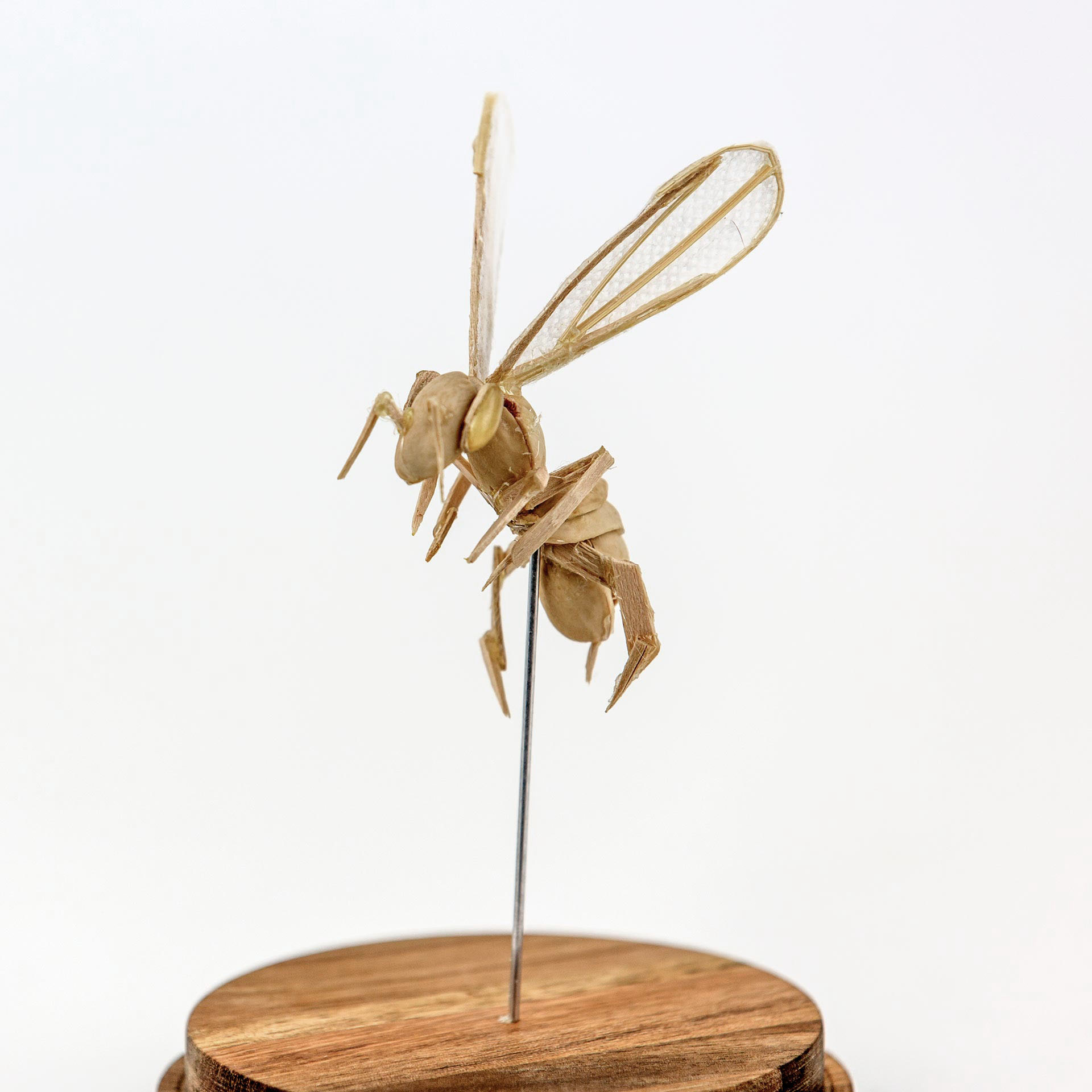 Bee #2 Future Fauna