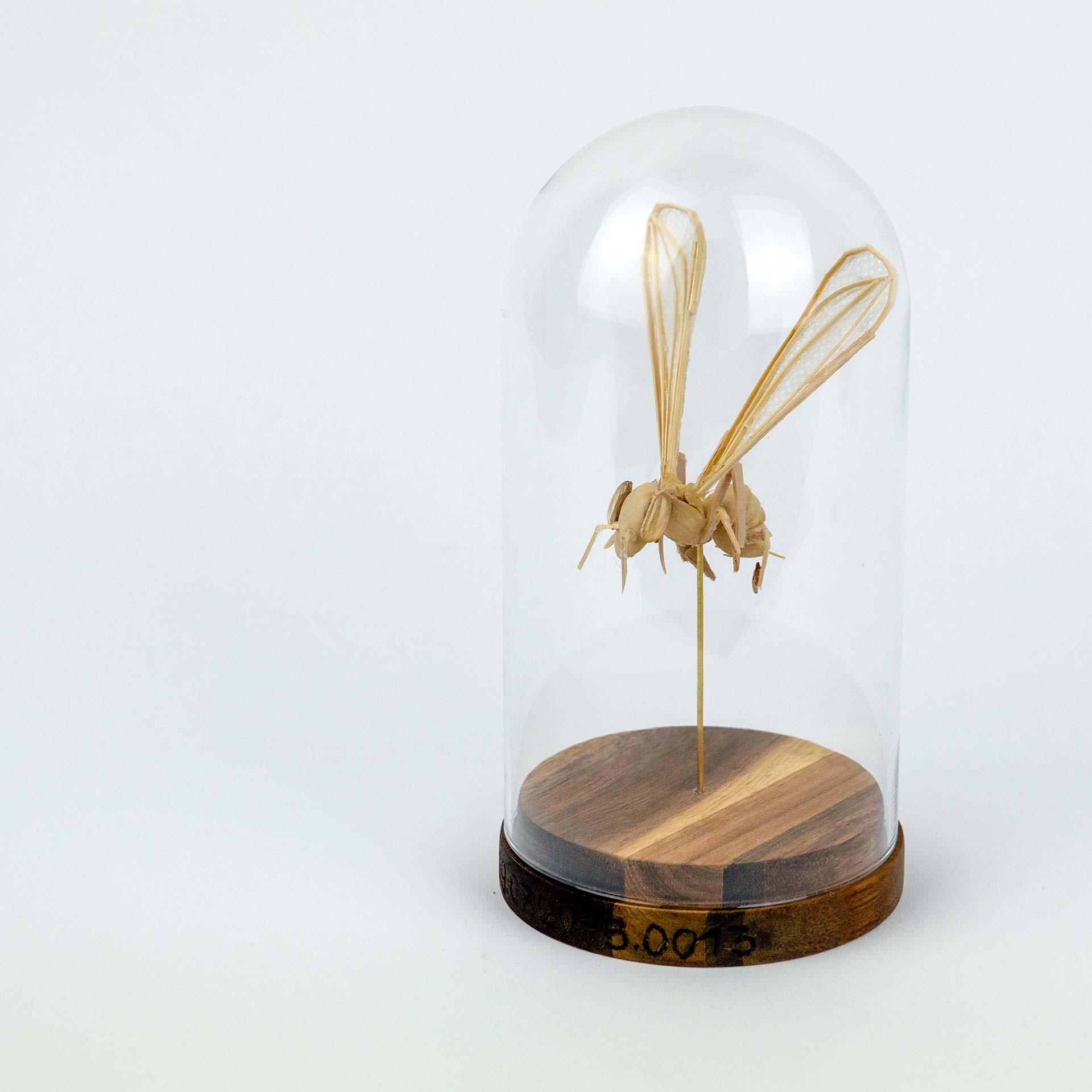 Bee #3 Future Fauna