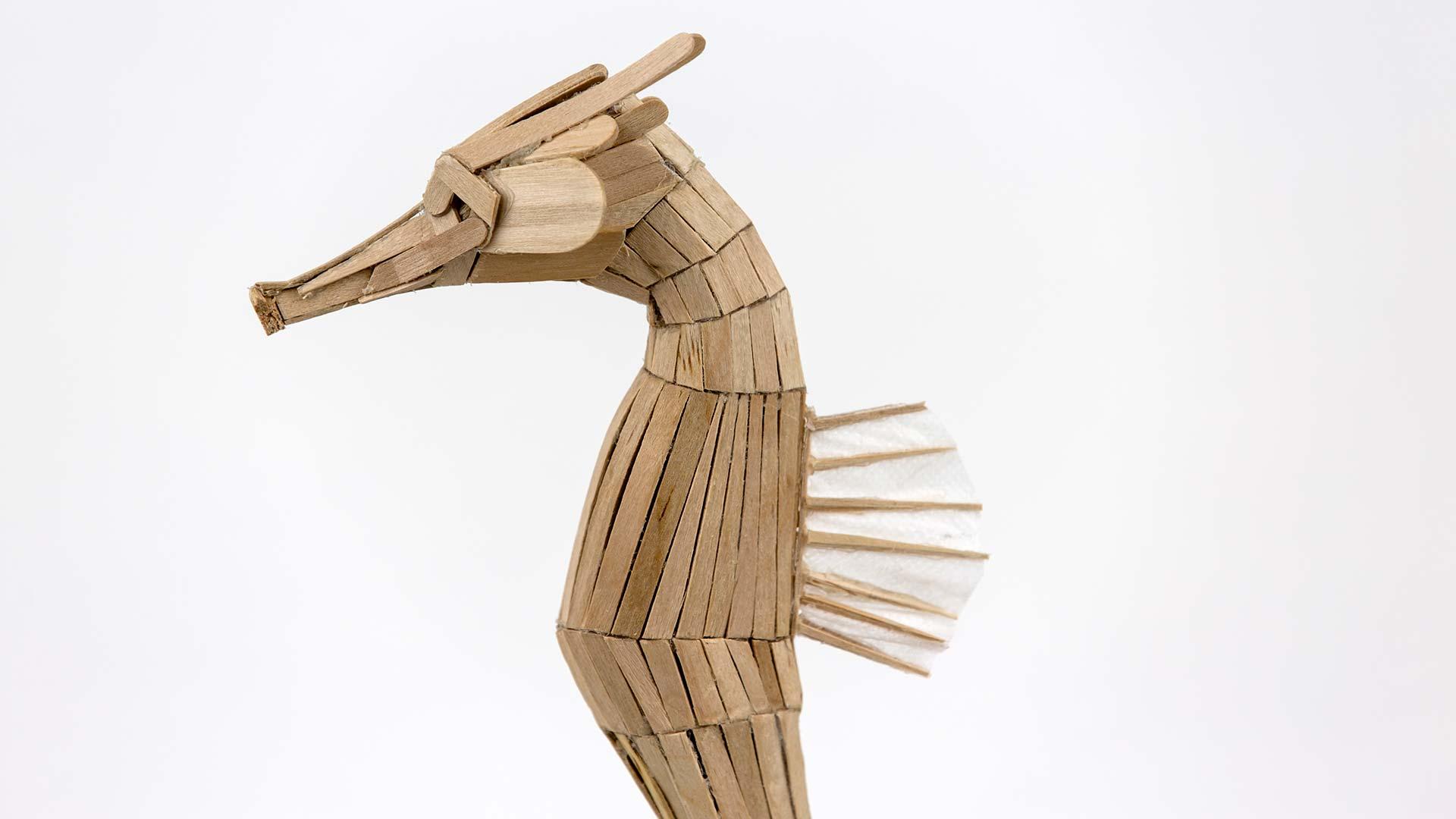 Seahorse Future Fauna